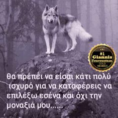 Greek Quotes, Once In A Lifetime, Deep Words, True Love, Wolf, Letters, Beautiful, Motorbikes, Real Love