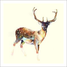 Charmaine Olivia—beautiful deer painting