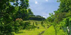 Amazing garden in The Tuscan Estate in La Guácima - Alajuela - Costa Rica http://lxcostarica.com/property/tuscan-estate-in-la-guacima