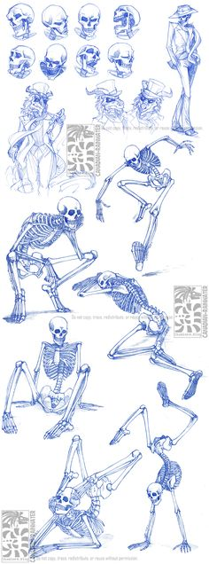Skeletal Sketchdump by *Canadian-Rainwater on deviantART