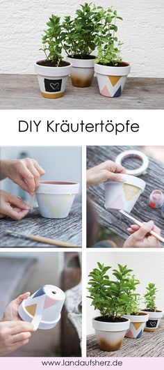 DIY Kräutertöpfe selber machen - Anleitung