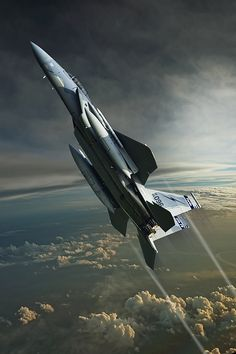 Eagle the immortal Fighter: Jet Fighter Pilot, Air Fighter, Fighter Jets, Airplane Fighter, Fighter Aircraft, Military Jets, Military Aircraft, Aviation Art, War Machine