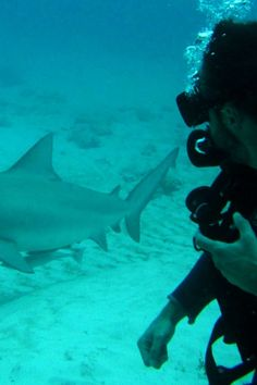Playa del Carmen - Things To Do - Scuba - Big Bull Shark Dive - Tour Image 06