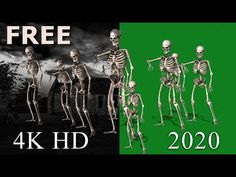 FREE Skeleton Dance (01) 4K HD Green Screen - YouTube Skeleton Dance, Green Screen Video Backgrounds, 4k Hd, Angles, Youtube, Movie Posters, Free, Film Poster