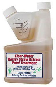 Barley Straw Extract...keeping pond water clear