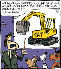 Reality Check by Dave Whamond Thursday, October 2014 Funny Animal Comics, Funny Cats, Funny Animals, Guitar Boy, Cartoon Cats, October 23, Reality Check, Comics Online, Crazy Cats