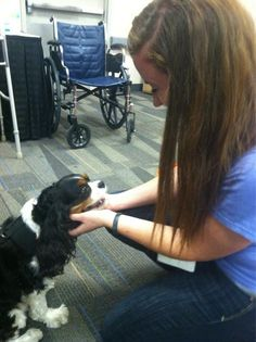 @KarenPDonato  Yep, found my calling at #conclave12 ! Pet therapy with veterans ! pic.twitter.com/jiJ2ppiu