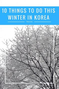 From the Korea Grand Sale to Amusement Parks winter discounts, festivals and more, here is what to do in the winter in Korea. Must see and must do activities all around the country on any tourist trip to the Land of the Morning Calm.