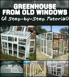 52 Ideas Backyard Shed Greenhouse Old Windows For 2019 Old Window Greenhouse, Diy Greenhouse Plans, Greenhouse Supplies, Outdoor Greenhouse, Build A Greenhouse, Greenhouse Growing, Greenhouse Gardening, Homemade Greenhouse, Cheap Greenhouse