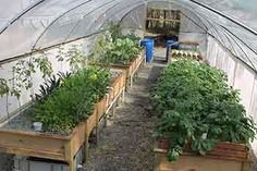 """DIY Aquaponics Big Question - """"How big a Aquaponics system do I need to feed my family""""? Small and very often poorly designed systems are promoted by some as fulfilling the requirements of a family leading to very disappointing results. Make sure you plan your project so it will actually provide for your family.  The answer is right here!"""
