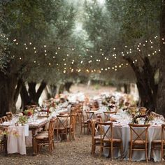 country forest wedding reception ideas with string lights wedding lights 20 Country Rustic Wedding Reception Ideas for Your Big Day - EmmaLovesWeddings Wedding Reception Ideas, Wedding Dinner, Tree Wedding, Garden Wedding, Wedding Table, Wedding Venues, Wedding Day, Wedding Backyard, Wedding Rings