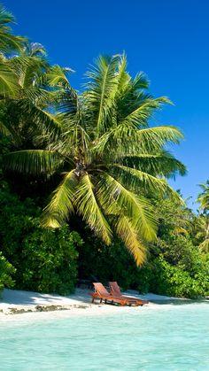 maldives, tropical beach.