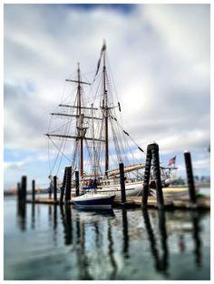 Irving Johnson (tall ship), San Pedro, CA