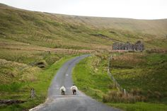 Ireland and England 2013 :: View Photos