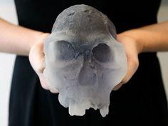 3d printed skull fossil #3dPrintedMedicalBiotech