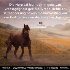 Die Here sal jou nooit 'n gees van vreesagtigheid gee nie. Bible Verses Quotes, Faith Quotes, Counselling Training, Good Night Prayer, Walk In The Spirit, Afrikaanse Quotes, Inspirational Qoutes, Spiritual Disciplines, Trust God