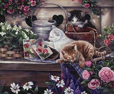 Playful+Kittens