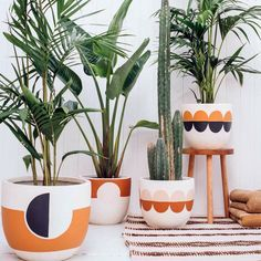 How good are these painted planters from Australian design duo Poppy Lane and Scott Gibson? Chic pots are not easy to find – especially sizable ones, big enough for large plants. So you can imagine my… Paint Garden Pots, Painted Plant Pots, Painted Flower Pots, Ceramic Plant Pots, Large Plants, Potted Plants, Indoor Plants, Pots For Plants, Pop And Scott