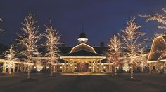 Reynolds Plantation (Ritz Carlton) at Christmas time - been here many times!