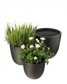 Intratuin heeft veel ideeën voor planten op je terras of balkon