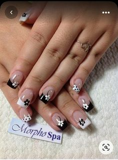 French Manicure Nails, French Manicure Designs, Simple Nail Art Designs, Short Nail Designs, French Tip Nails, Easy Nail Art, Gel Nails, Acrylic Nails, Nails Design