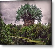 Tree Of Life Metal Print by Hanny Heim