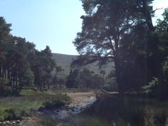Beauty of the trough of bowland