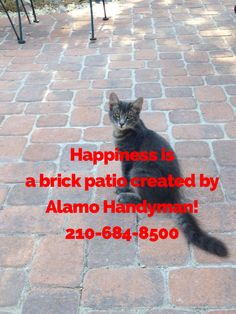 You bet it is!! We love this kitty!! #outdoors, #patio, #handymantx