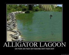 aligator bucket | funny alligator picture by 32bloodassassin32 photobucket