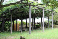 Mifuneyama Gardens - Takeo city - Saga Prefecture, Japan (off-season)