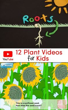 Collection of 12 Plant Videos for Kids that would be a perfect complement to a plant unit. Includes a brief description and suggested grade levels for each video.: