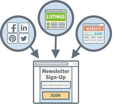 The email marketing effect