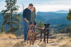 Mount Falcon Park Colorado Engagement with Brown and Black Dog
