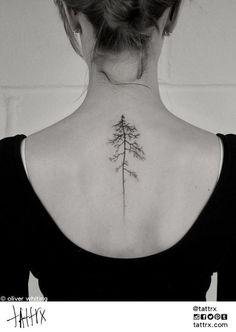 Tatuaggi con pini e abeti: idee per ispirarsi e significato