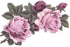 XL precioso Lila Rose Shabby tobogán calcomanías ~ Esquinas Muebles tamaño ~