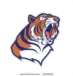 Cincinnati Bengals Football Team Logo Graphic Bengal Tiger