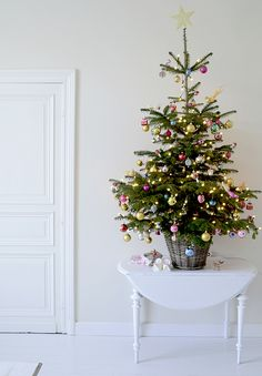 Love the touch of a table top live tree! Gives you that scent without buying a HUGE tree :) I would even look for a live one and pot it for the season and plant in the spring...oh the possibilities