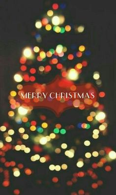 Merry Christmas everyone! xxx << merry Christmas to everyone! I hope y'all have a great day! Christmas Time Is Here, Noel Christmas, Merry Little Christmas, Christmas Quotes, All Things Christmas, Merry Christmas Background, Wallpaper Natal, Of Wallpaper, Wallpaper Pictures