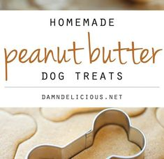 Homemade Peanut Butter Dog Treats – The easiest homemade dog treats ever – simply mix, roll and cut. Simple Cookie Dough Recipe, Cookie Recipe Uk, Recipe Cup, Cookie Icing, Peanut Butter Dog Treats, Homemade Peanut Butter, Homemade Dog Treats, Plain Cookies, Easy Sugar Cookies