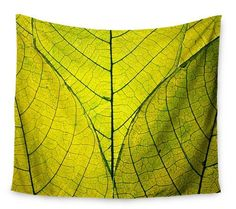 Features:  -Every Leaf a Flower collection.  -Can be used as a bedspread, bed cover, tablecloth or curtain.  -Machine wash, gentle cycle, line dry or tumble dry low to no heat.  -Made in the USA.  Siz