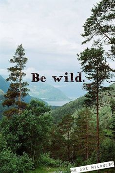 Be Wild! Make the most out of your camping experience at http://hartranchresort.com.