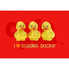 I Love Rubber Duckies