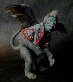 The 'flying monkeys' a term taken from The Wizard of Oz because they did whatever the Wicked Witch asked of them even if it was wrong. The narcissist in your life has many of these and they will use them to help control or guilt you into submission.