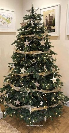 Traditional Christmas tree decorates your room 2020 Beautiful Christmas tree with lights and decorations, Christmas decorations ideas, Christmas tree design 2020 Elegant Christmas Trees, Diy Christmas Decorations For Home, Traditional Christmas Tree, Xmas Tree Decorations, Ribbon On Christmas Tree, Christmas Tree Design, Christmas Tree Themes, Noel Christmas, Rustic Christmas