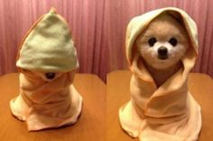 This is the only thing Star Wars related that I like. #MayTheFourth