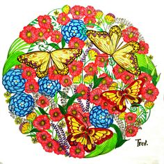 https://flic.kr/p/zoe5pz | Butterflies | A colouring marathon. (Possibly click on photo to see it larger.) A challenging page from Millie Marotta's Animal Kingdom.