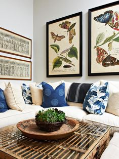 Floral Decorating Ideas - Insect Decor | Home Decor Accessories & Furniture Ideas for Every Room | HGTV