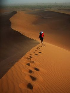 223 Best Sahara images in 2017 | Deserts of the world, Deserts