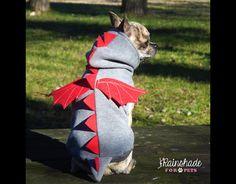 Ehi, ho trovato questa fantastica inserzione di Etsy su https://www.etsy.com/it/listing/492247180/costume-da-drago-per-cani-felpa-drago