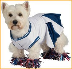 Pet Halloween Costumes Cheerleader Pets Costume